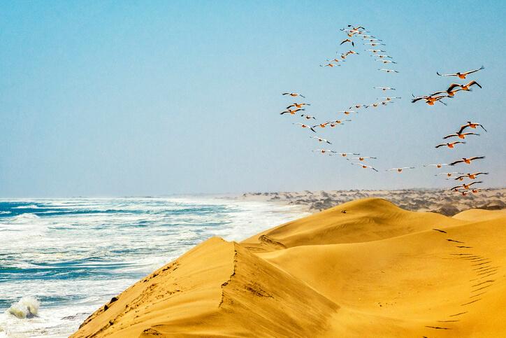Imagem de praia na Namíbia.
